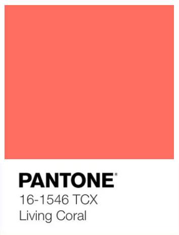 Kolor roku 2019