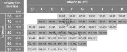 Tabela rozmiarów biustonoszy firmy Vena